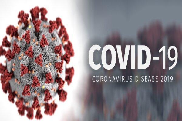 داروی پوکی استخوان با ویروس کرونا مقابله می نماید