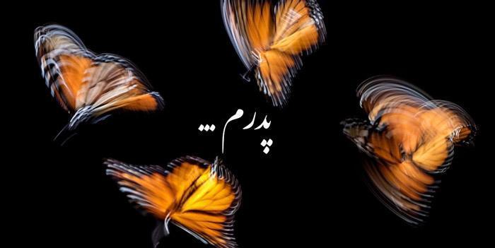 مجموعه شعر در فراق پدر و پدر فوت شده (در سوگ پدر)