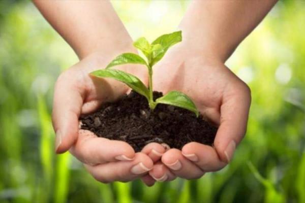 اصلاح کننده ای ارزشمند برای خاک